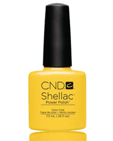 NEW 2014! Shellac Bicycle Yellow